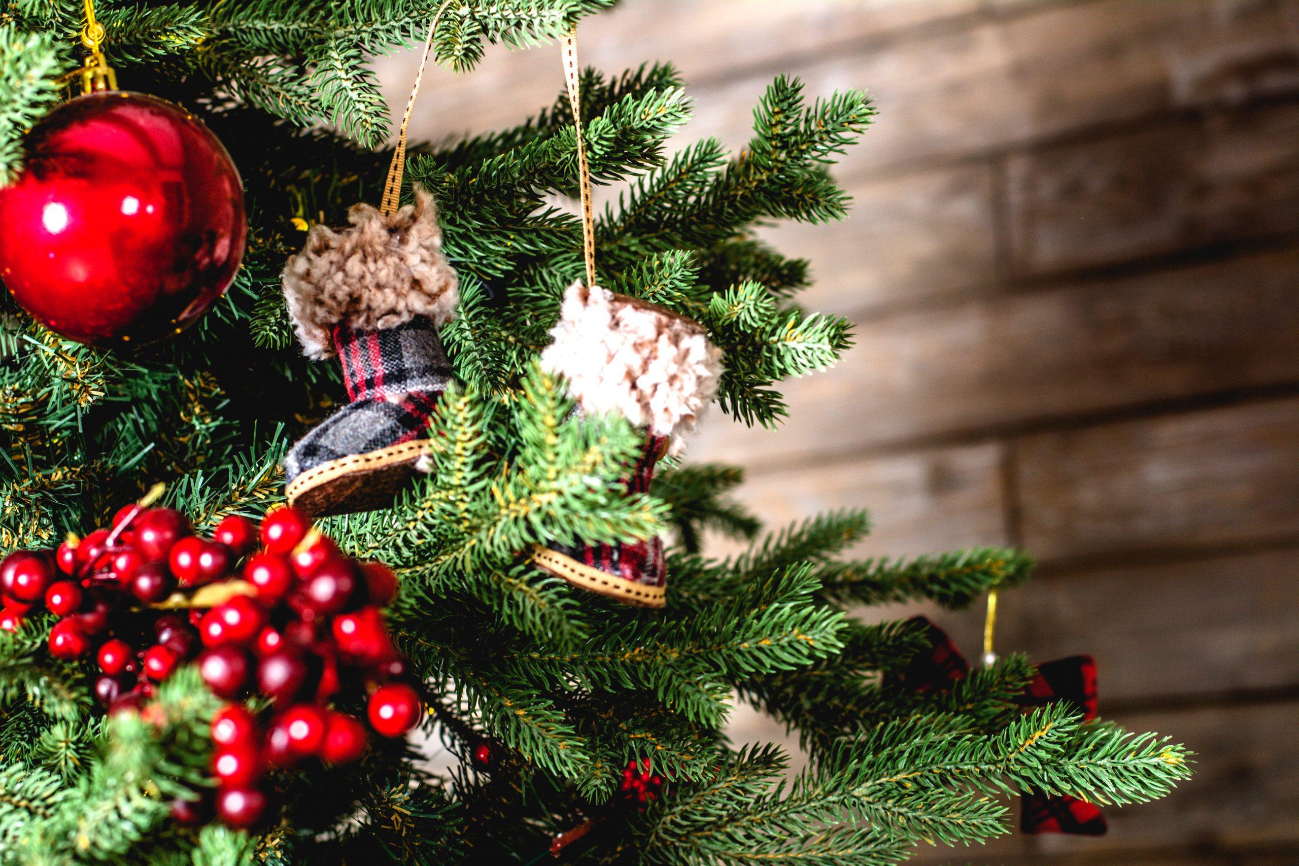 7+1 alternatív karácsonyfa a tudomány jegyében